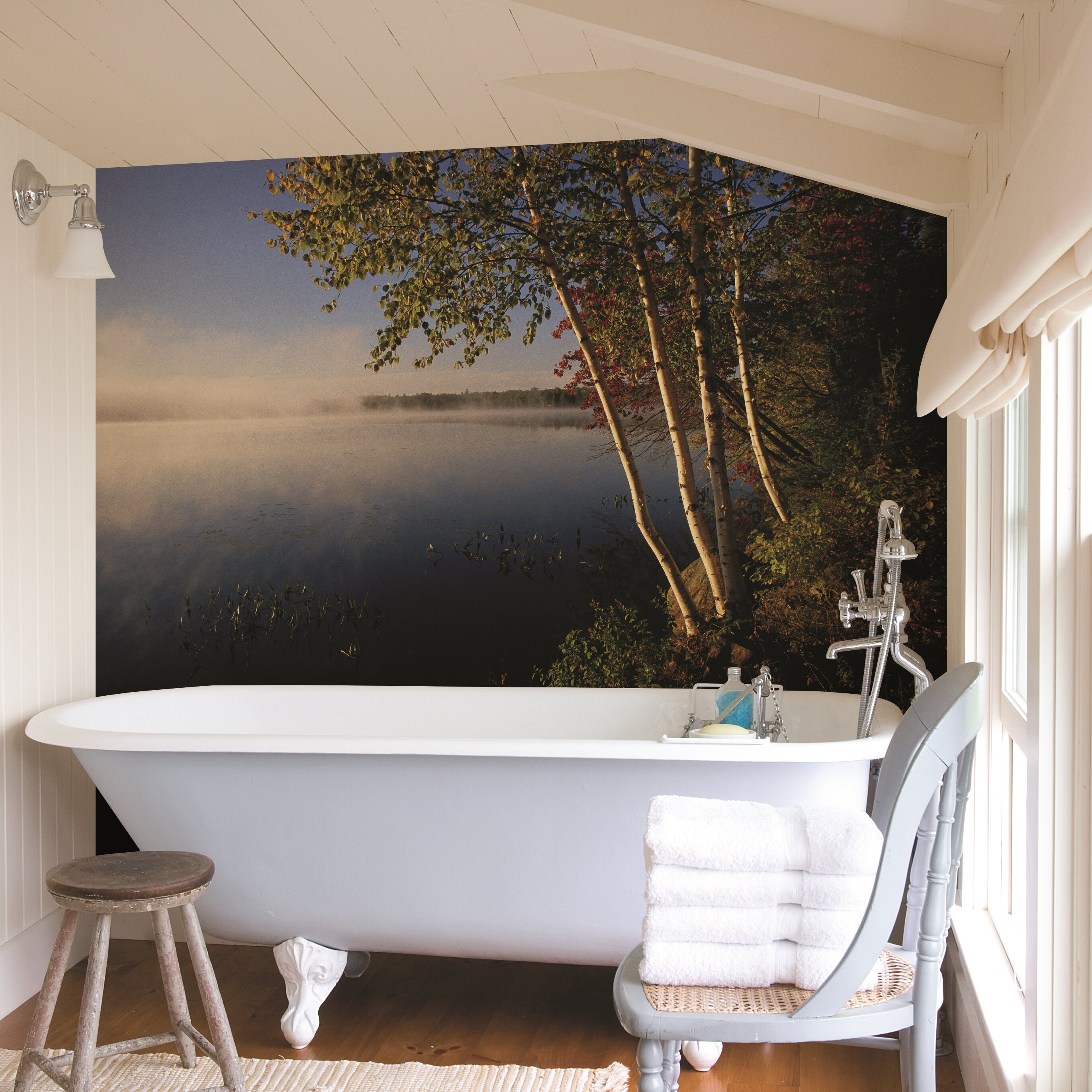 Brewster home fashions national geographic trees on lake for Brewster birch wall mural