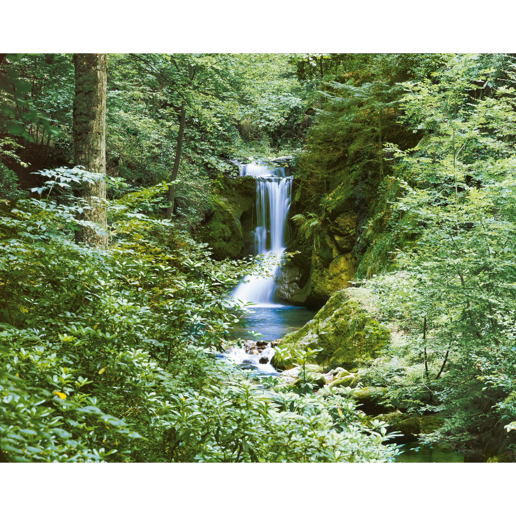Brewster home fashions ideal decor waterfall in spring for Brewster wall mural