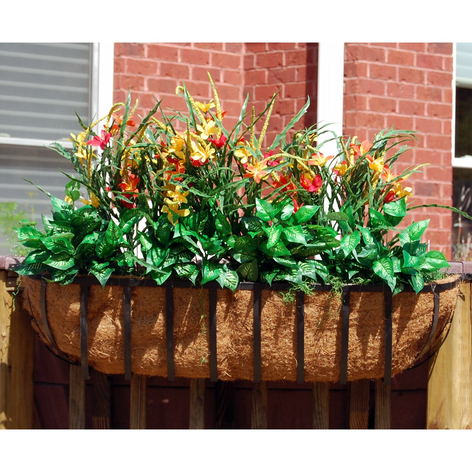 Griffith creek designs newport rectangular window box for Wayfair garden box