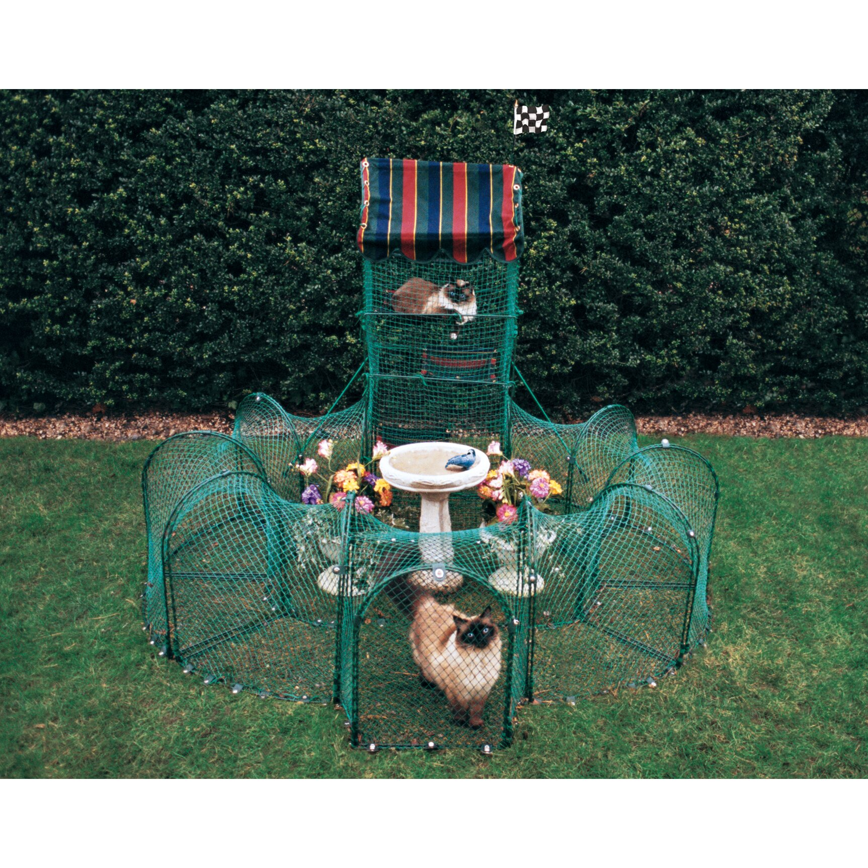 Kittywalk Systems Grand Prix Outdoor Pet Playpen u0026 Reviews ...