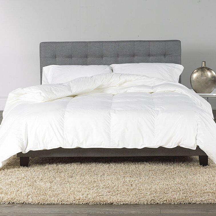 Westex Goose Down Comforter Reviews Wayfair