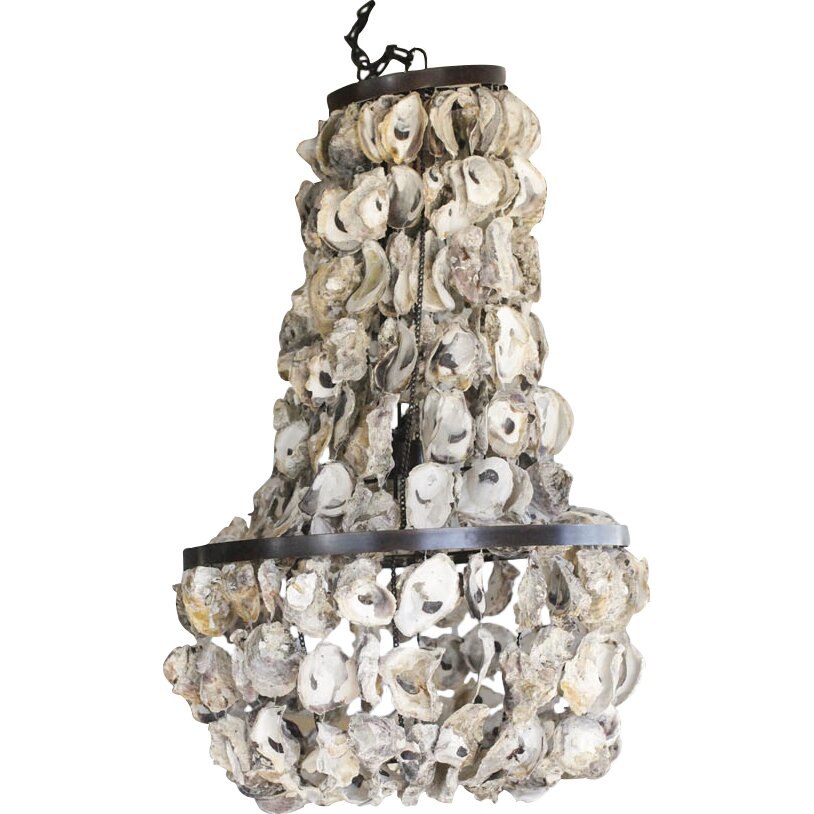 Creative Co-Op Seaside Chandelier & Reviews | Wayfair