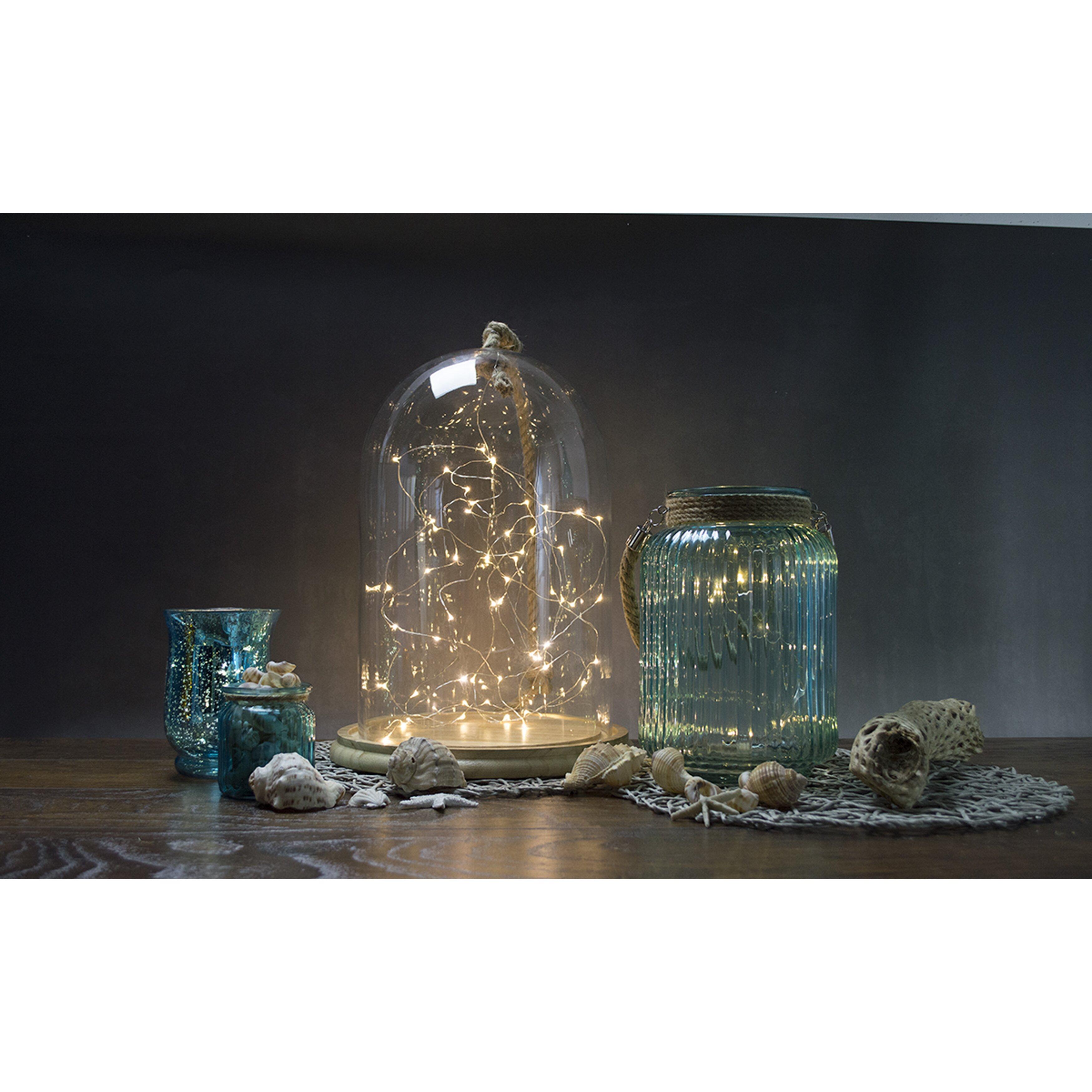 Boston Warehouse Trading Corp Allure 60-Light 20 ft. Fairy String Lights & Reviews Wayfair