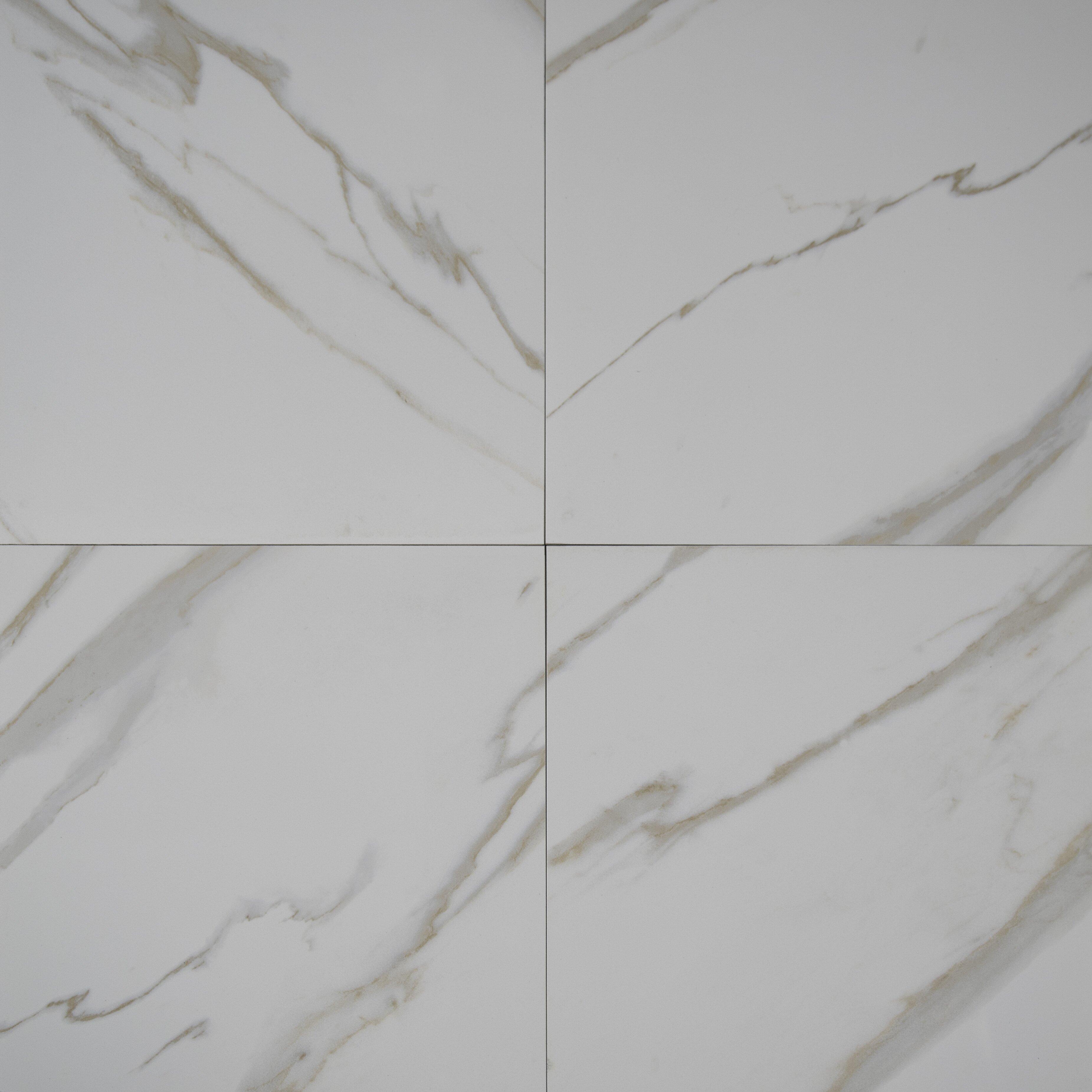 Msi pietra calacatta 18 x 18 porcelain field tile in for 18 x 18 tile floor