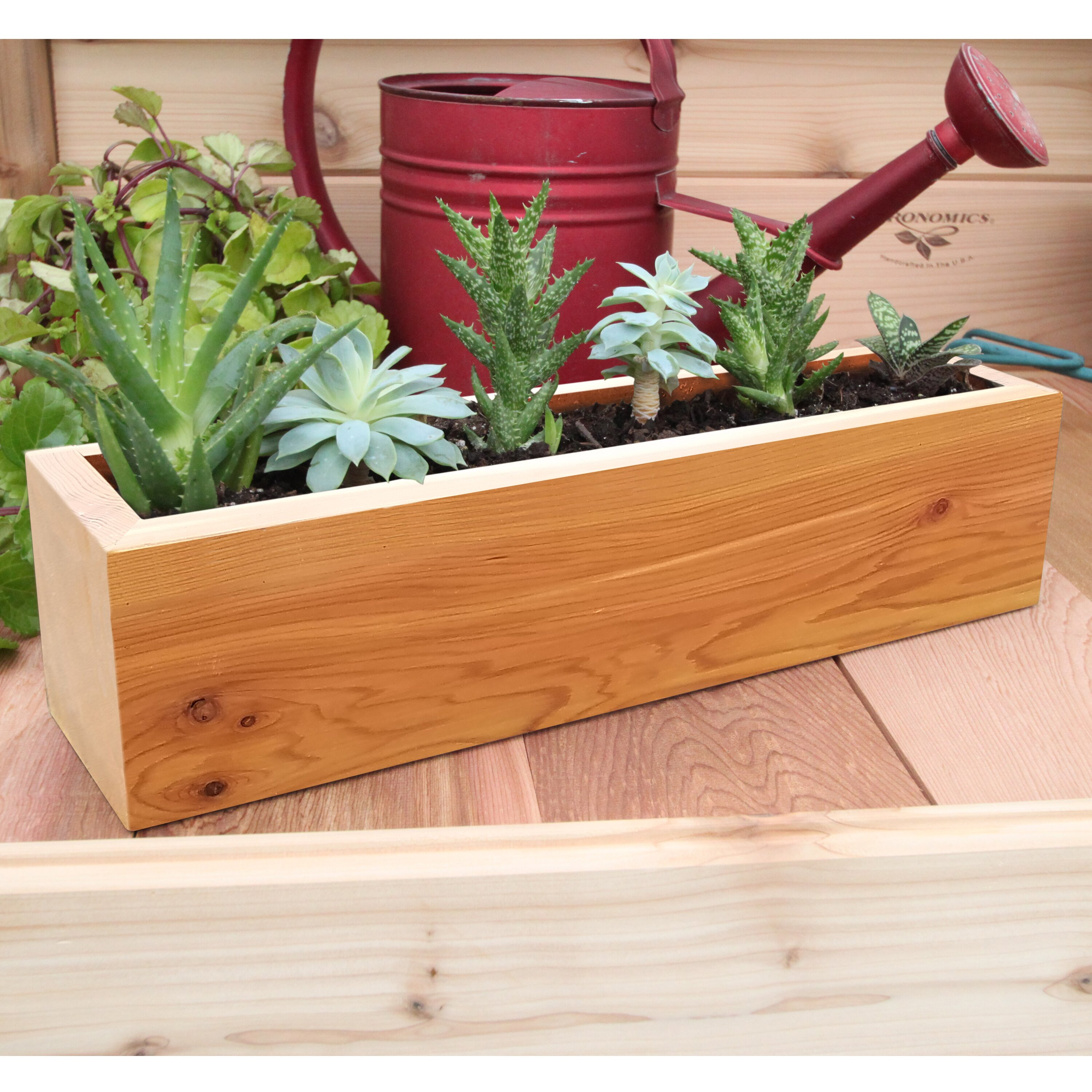 Gronomics succulent rectangular pot planter reviews for Wayfair garden box