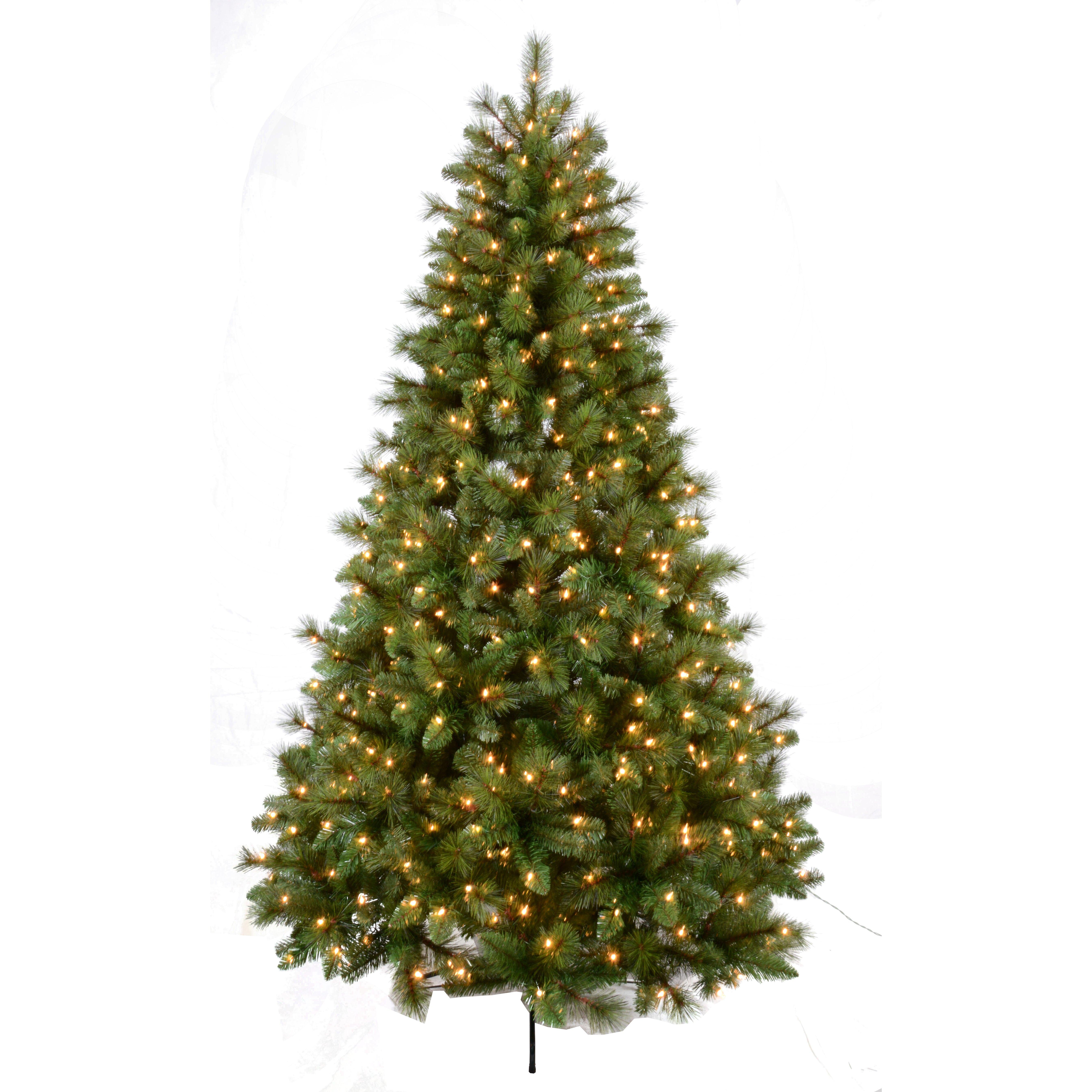 Christmas Tree Nursery Stock