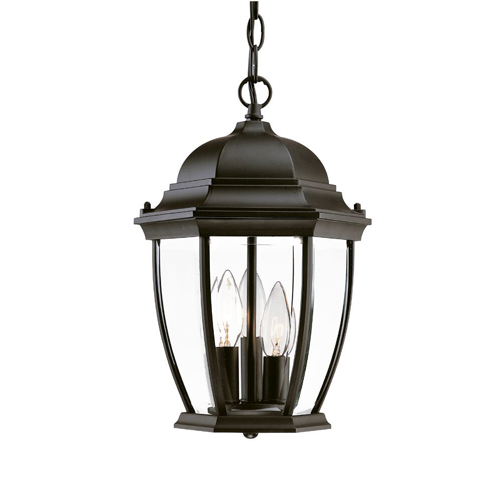 Acclaim Lighting Wexford 3 Light Outdoor Hanging Lantern  : Acclaim Lighting Wexford 3 Light Outdoor Hanging Lantern 5036BK 5036BW from www.wayfair.com size 1000 x 1000 jpeg 66kB