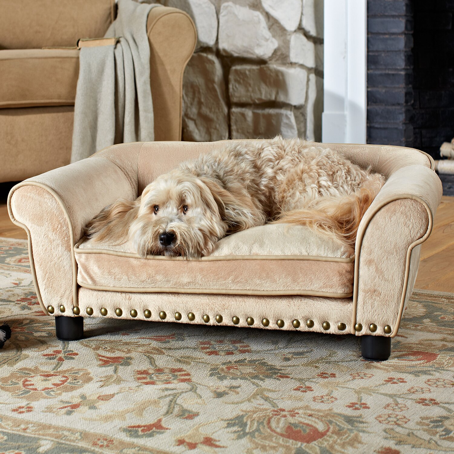 Enchanted Home Pet Dreamcatcher Dog Sofa Bed In Carmel Reviews Wayfair
