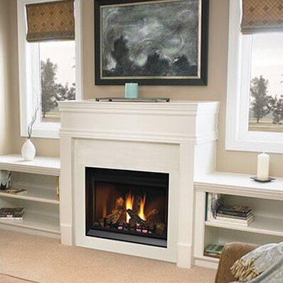 Napoleon Direct Clean Face Direct Vent Gas Fireplace Reviews Wayfair
