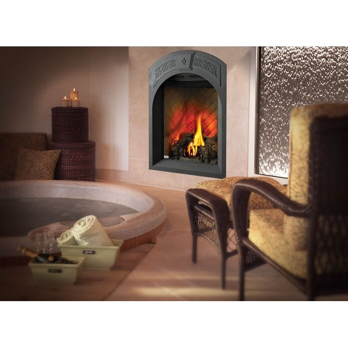 Napoleon Tureen Direct Vent Wall Mount Gas Fireplace ...