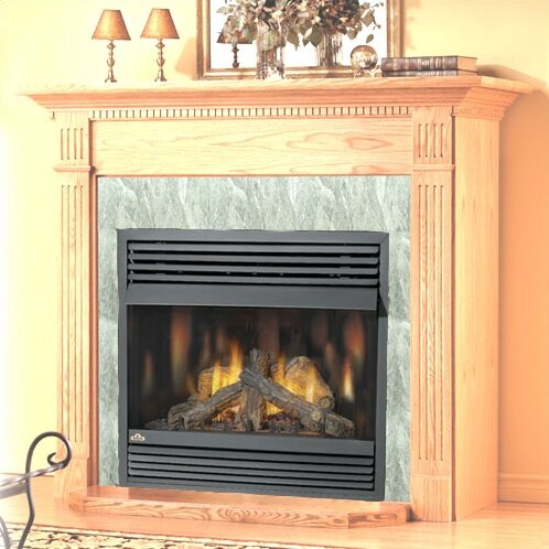 Napoleon Vent Free Wall Mount Gas Fireplace Reviews Wayfair