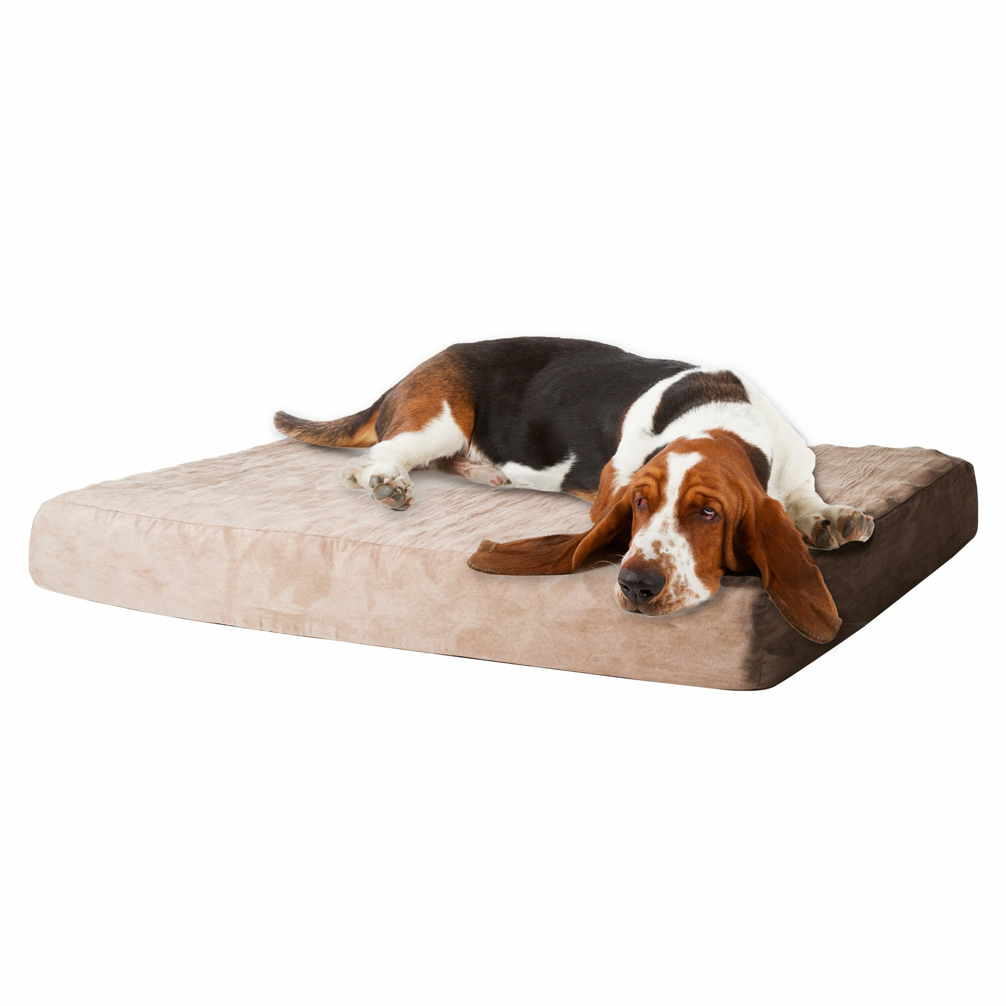 paw memory foam dog bed with removable cover reviews wayfair. Black Bedroom Furniture Sets. Home Design Ideas
