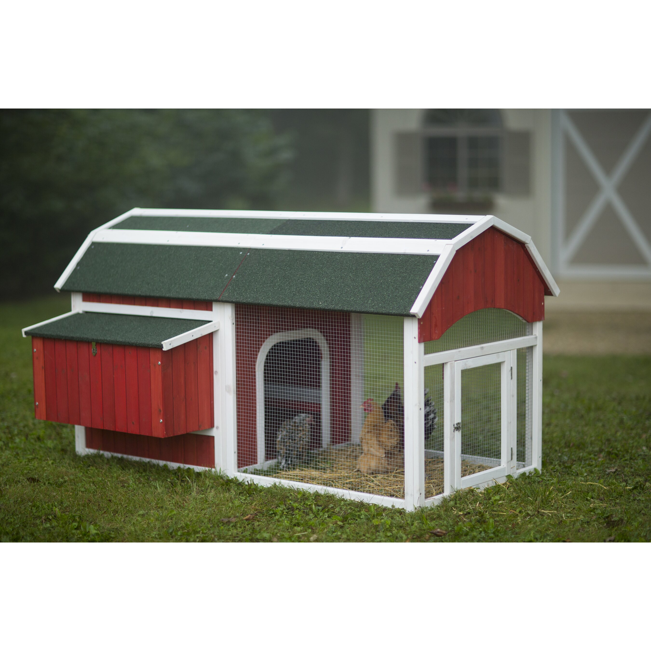 Prevue Hendryx Red Barn Small Chicken Coop Amp Reviews Wayfair