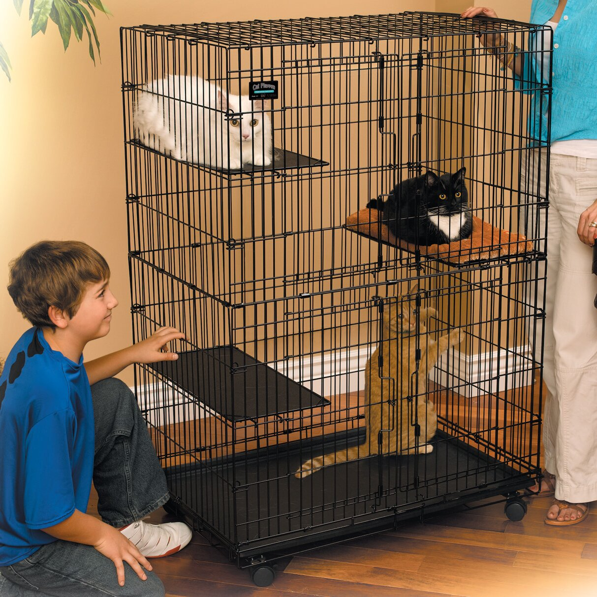 Midwest Homes For Pets Cat Cage Playpen Reviews Wayfair