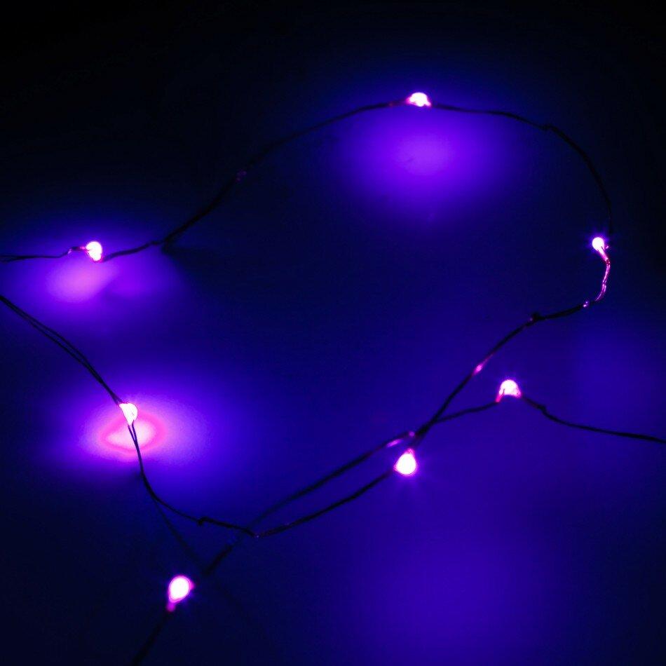 Koyal Wholesale 12-Light Fairy String Lights & Reviews Wayfair