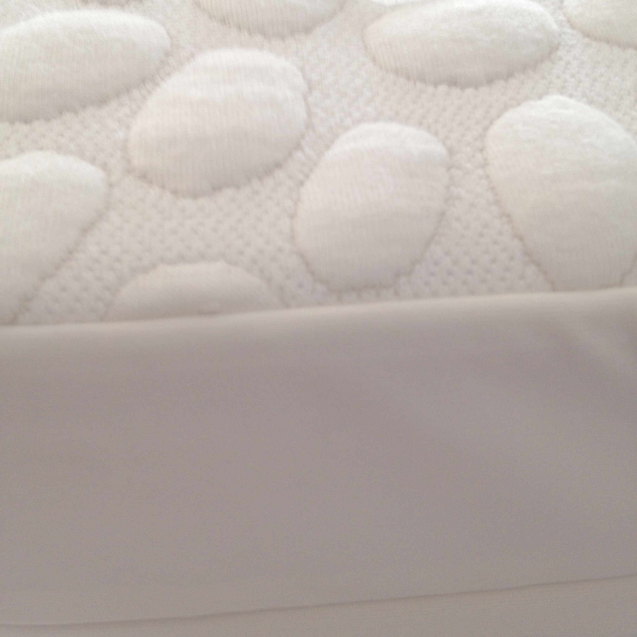 Dream Decor Pebbletex Tencel Bed Bug Encasement