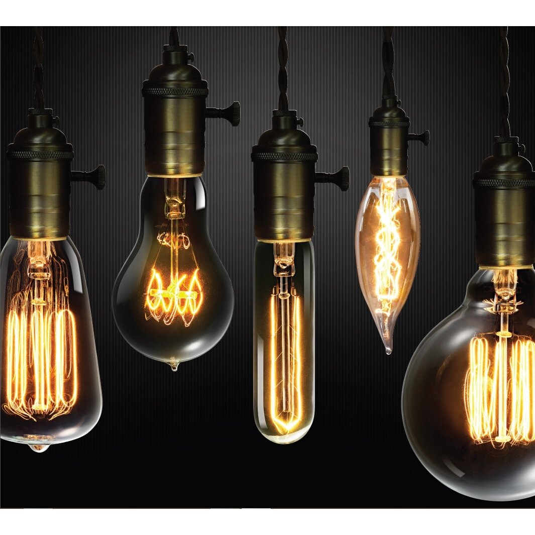 Globe Electric Company 60w Vintage Edison S60 Squirrel Cage Incandescent Filament Light Bulb