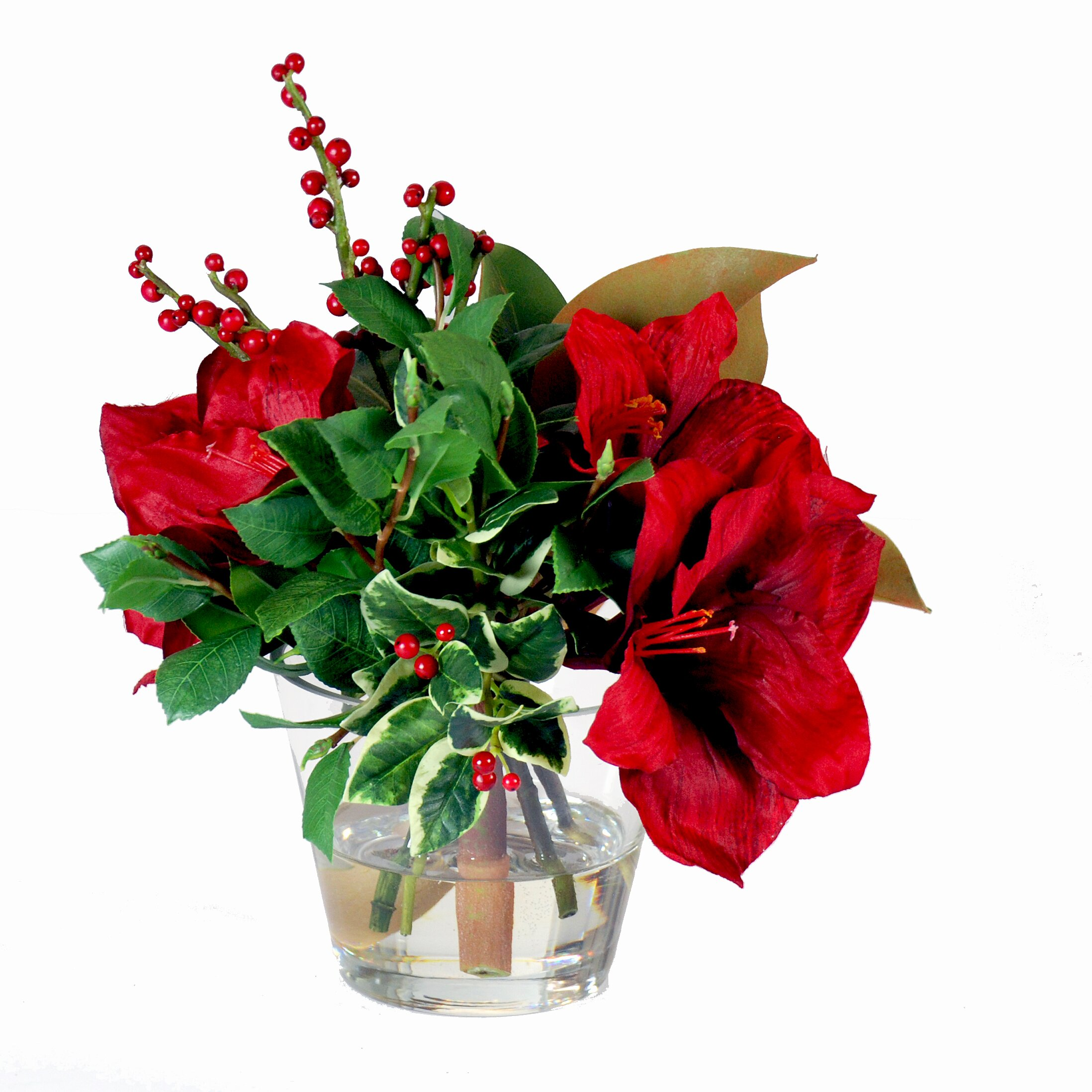 Jane seymour botanicals amaryllis holiday glass vase for Amaryllis christmas decoration