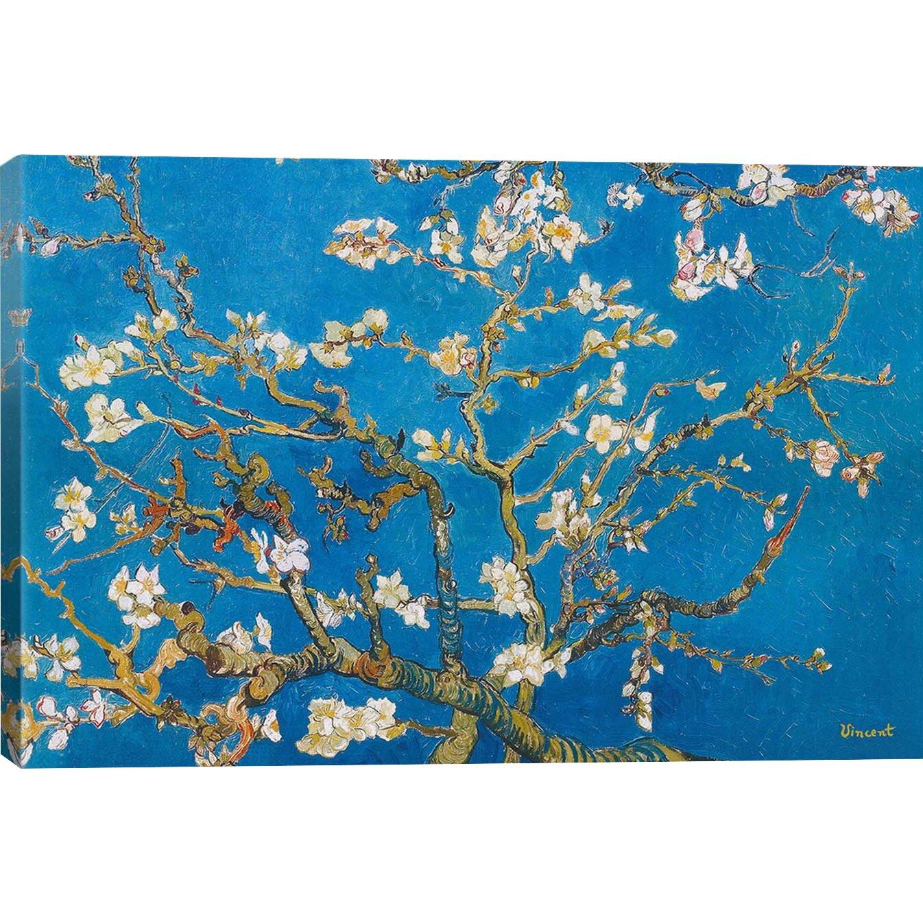 icanvas almond blossom by vincent van gogh painting print on canvas reviews wayfair. Black Bedroom Furniture Sets. Home Design Ideas