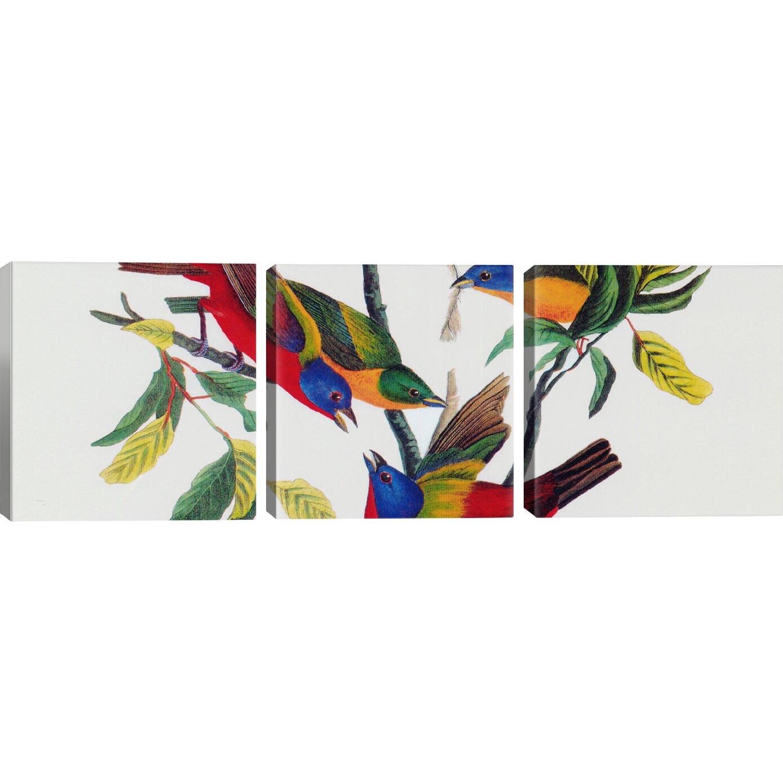 Icanvas Quot Painted Bunting Quot By John James Audubon 3 Piece
