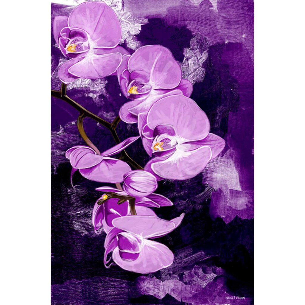 maxwell dickson orchid painting print on wrapped canvas reviews wayfair. Black Bedroom Furniture Sets. Home Design Ideas