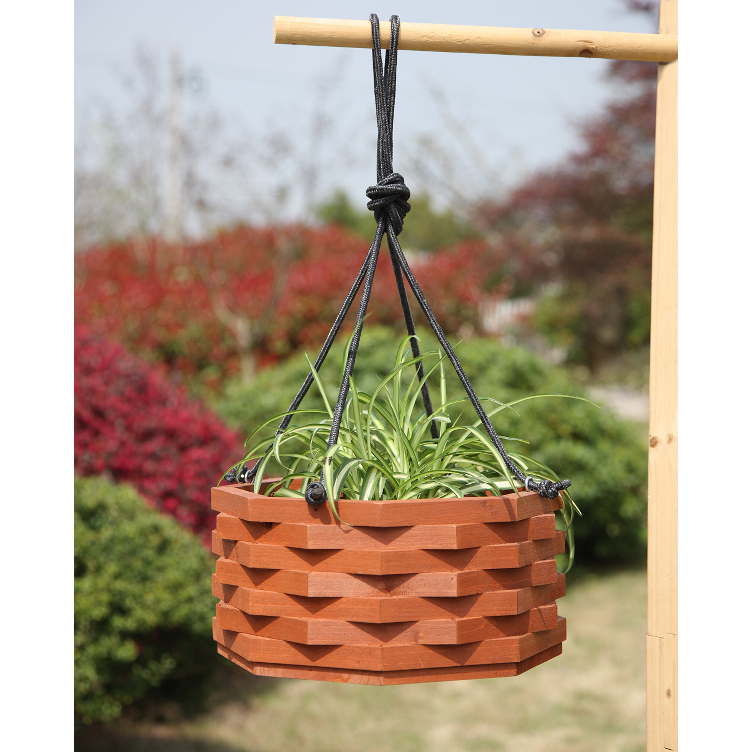 Convenience Concepts Planters Amp Potts Round Hanging