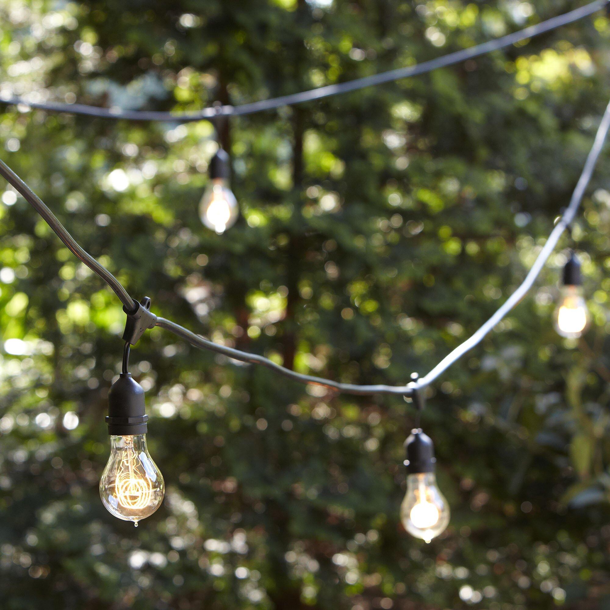 Birch Lane Vintage Edison String Lights Reviews Wayfair