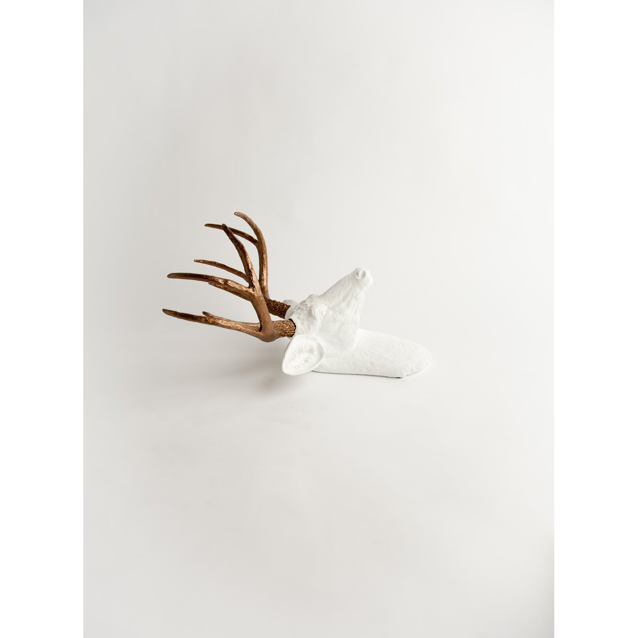 white faux taxidermy the lydia deer head wall d cor wayfair. Black Bedroom Furniture Sets. Home Design Ideas