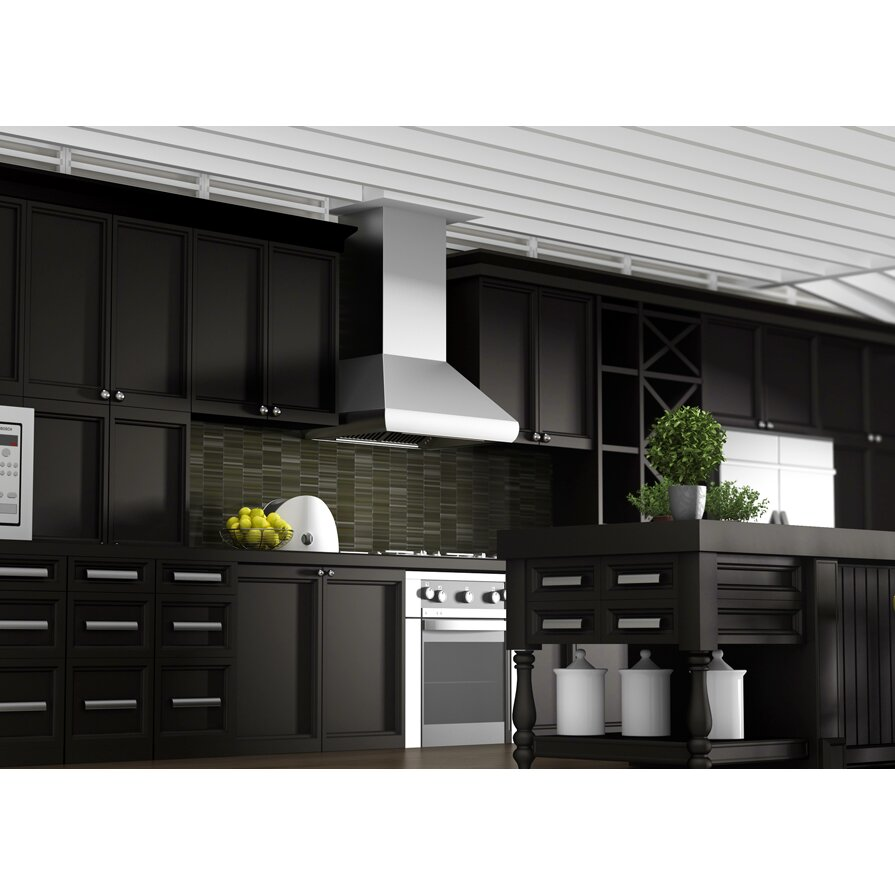 Z Line Kitchen 900 Cfm Ducted Wall Mounted Range Hood Reviews Wayfair