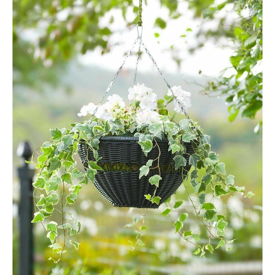 Plow Amp Hearth Novelty Hanging Planter Amp Reviews Wayfair