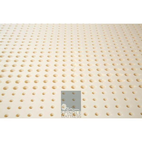 "Spindle Abscond 10"" Latex Foam Mattress & Reviews"