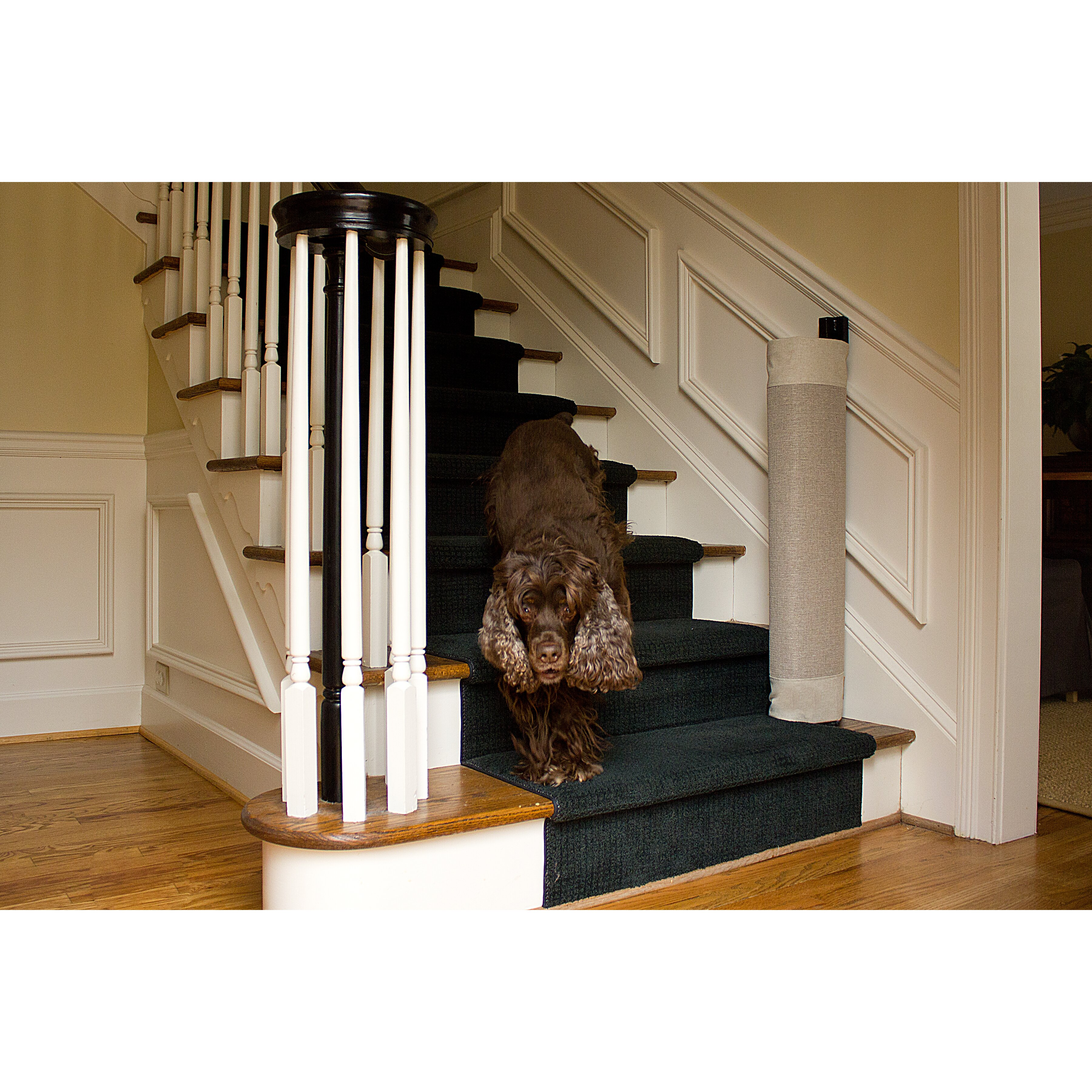 Thestairbarrier Signature Wall To Banister Khaki Gate