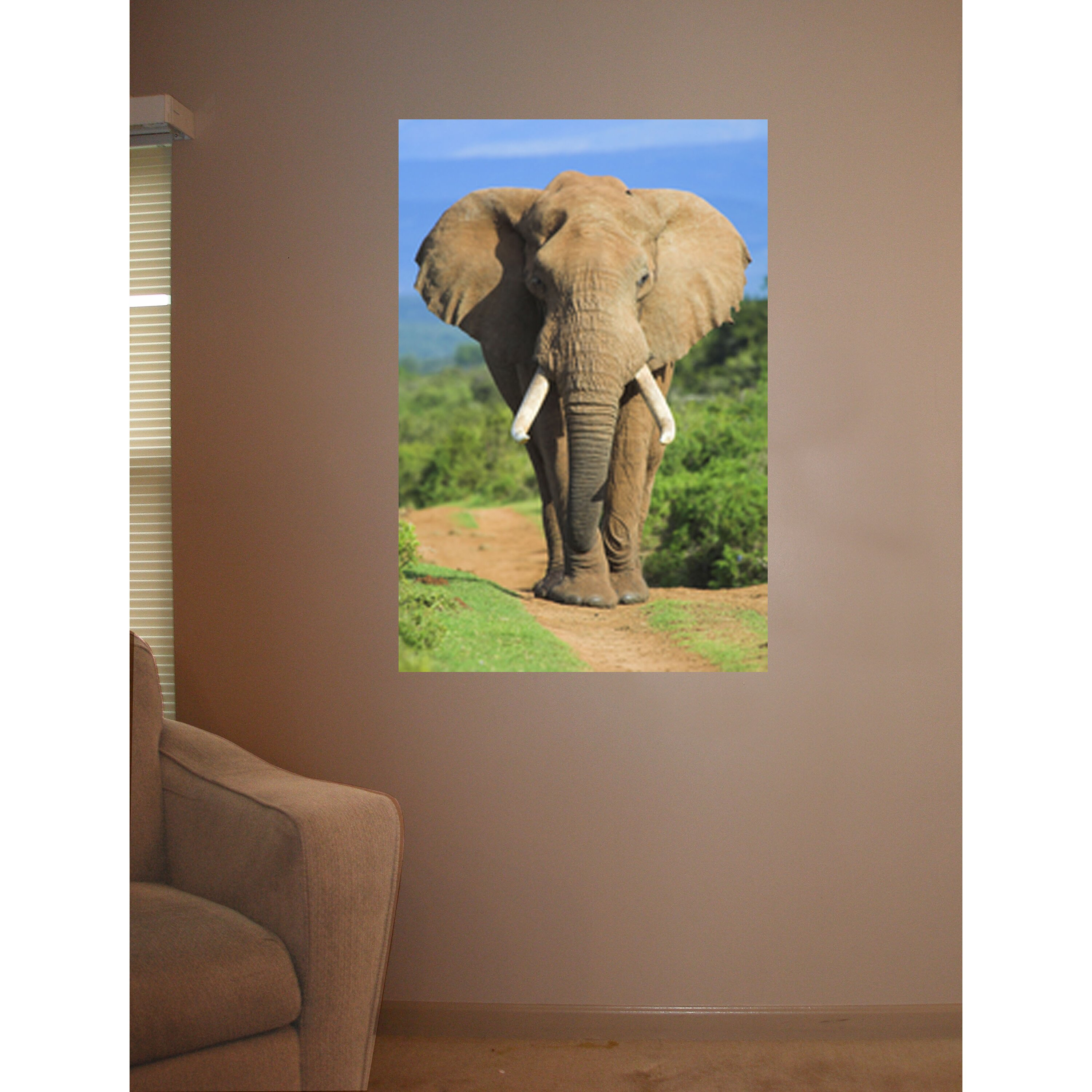 Wallhogs elephant ii wall mural wayfair for Elephant wall mural