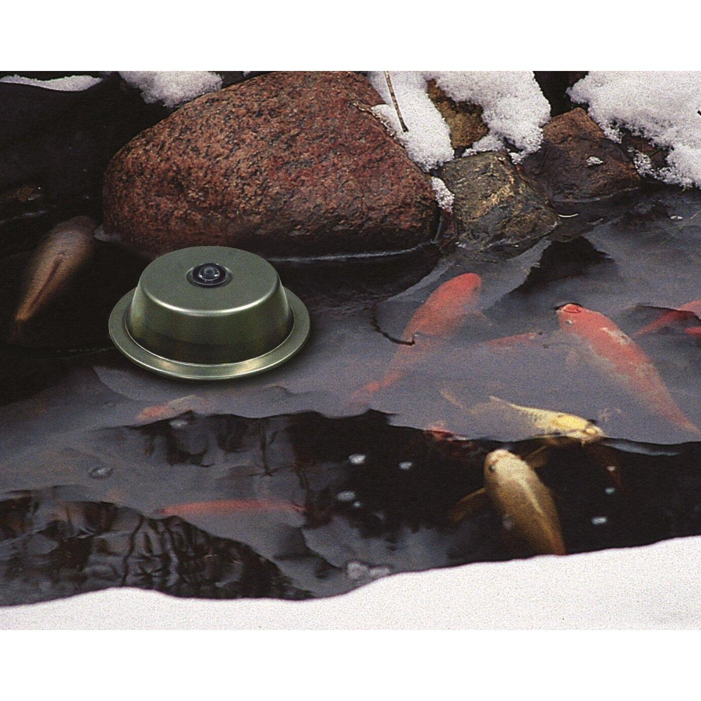 Aquascape Pond De Icer Heater 300 Watt Wayfair
