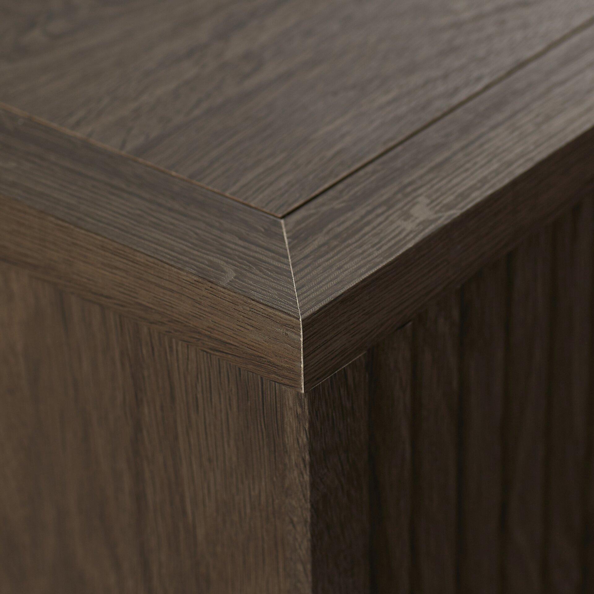 Brayden Studio Bourque 2 Door Cabinet Amp Reviews Wayfair