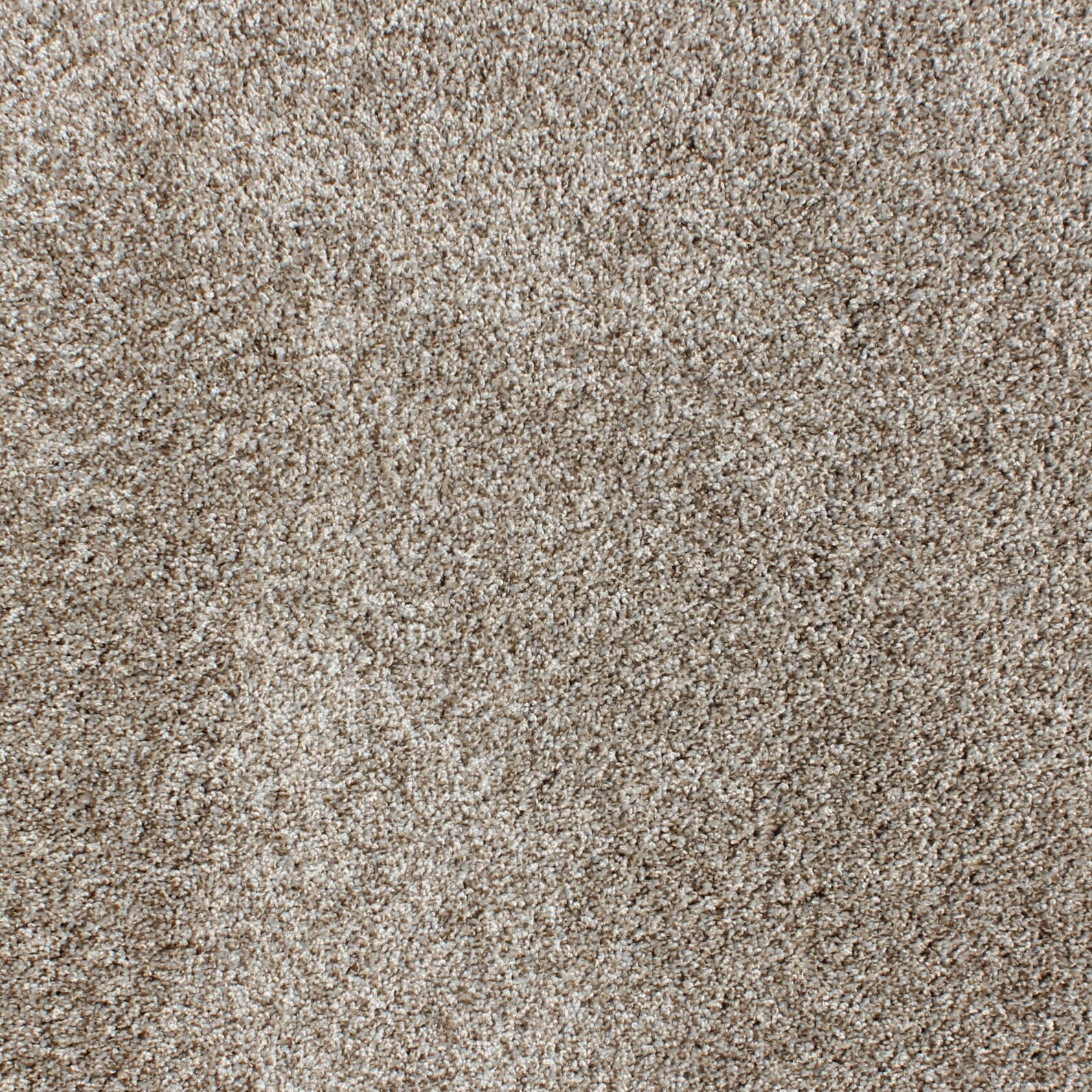 "Carpets Floor Tiles: Berkshire Flooring Sarasota Residential 24"" X 24"" Carpet"