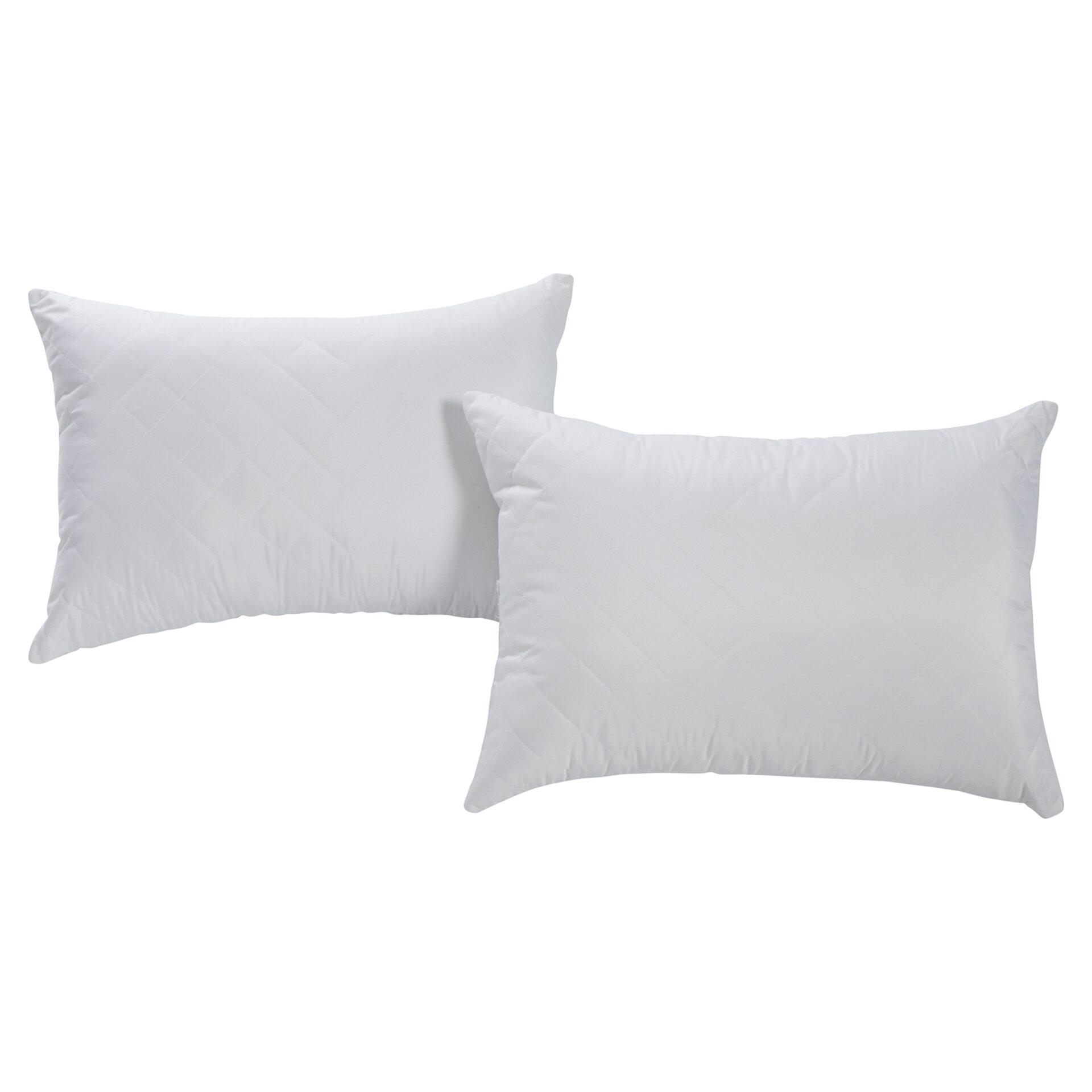 Wayfair Sleep Wayfair Sleep Firm Quilted Pillow & Reviews Wayfair.ca