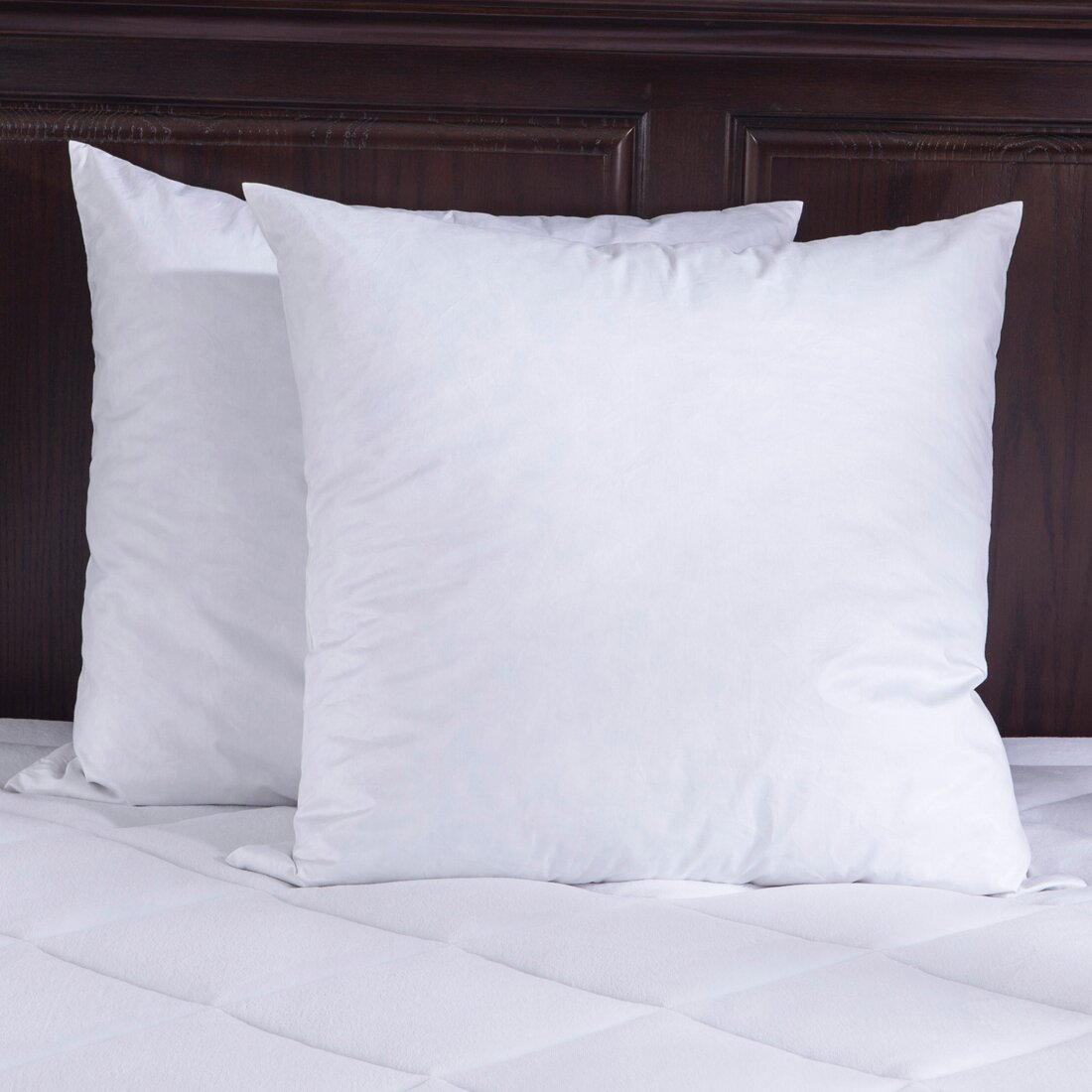 Puredown bed insert feathers pillow reviews wayfair for Bed pillows reviews