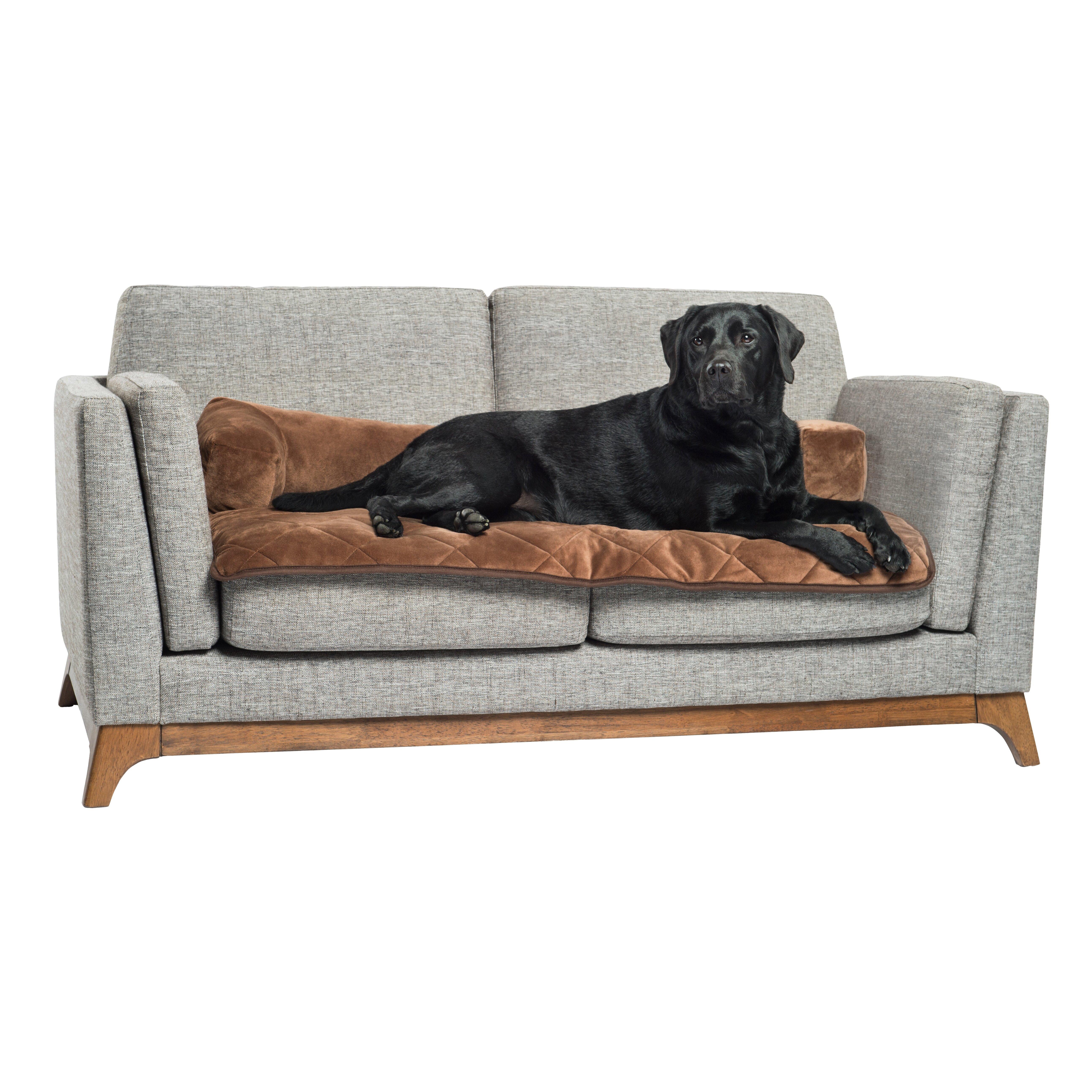 Pettherapeutics Pet Therapeutics Therawarm Self Warming Sofa Bolster Furniture Protector